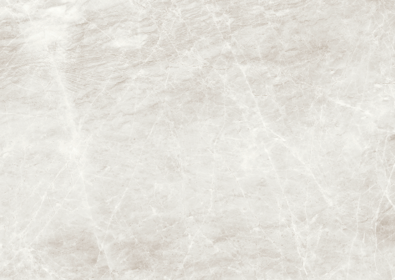 Marble Tiles in Shell Stone Design